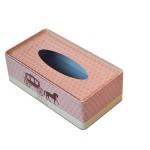 OEM Customized Metal Tissue Boxes