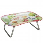 Multiple Use Children Tinplate Tray From China Manufatory